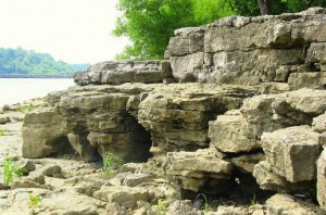 Fossil_beds_on_the_Ohio_River
